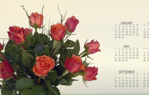 Personalised Desktop Calendars Category Image