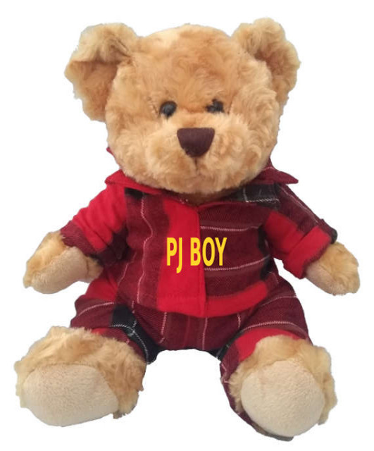 PJ Teddy Bear Boy